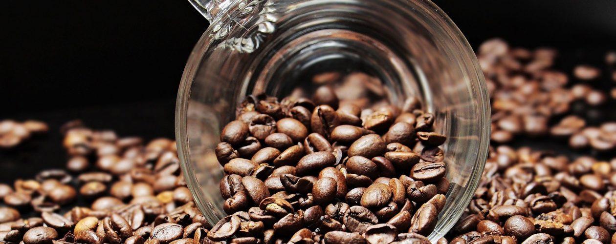 Le café décaféiné